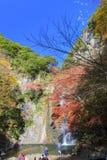 在Minoo瀑布,大阪,日本的秋天 免版税库存照片