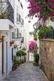 在Mojacar村庄的小巷 库存照片