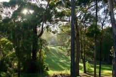 在Mollymook高尔夫球场的早晨光 免版税库存照片