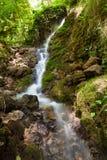 在Monasterio de piedra的小河 免版税库存图片