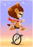 在monocycle的滑稽的狮子 库存照片