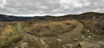 在Mont阿尔伯特,魁北克,加拿大附近的足迹 免版税库存照片