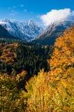 在montains的五颜六色的秋天 库存照片