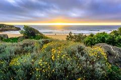 在Montera海滩的日落 免版税库存照片