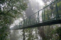 在Monteverde的暂停的桥梁 免版税库存图片