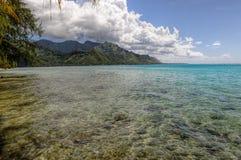 在Moorea.French波里尼西亚的清楚的水 库存照片