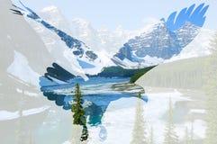 在Moraine湖背景的白头鹰 免版税库存图片