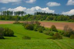 在Moravian石灰岩地区常见的地形的春天风景 图库摄影