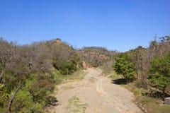 在morni小山的干燥河床 免版税库存照片