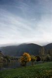 在Mosel的秋天树 库存照片