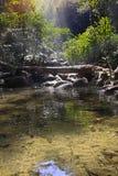 在mountai的瀑布 免版税图库摄影