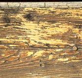 在mozzate生锈的黄铜棕色敲门人N金属胶合木意大利lomb 免版税库存图片
