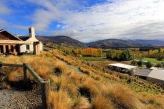 在Mt困难酿酒厂,新西兰的秋天 免版税库存图片