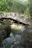 在Mt基地的木桥  2860高度也相信称神希腊米mt冥想神话奥林匹斯山宫殿高原stefani王位对十二宙斯 免版税库存图片