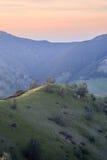 在Mt蝙蝠鱼国家公园,康特拉科斯塔县,加利福尼亚的日落 图库摄影