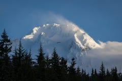 在Mt.敞篷,俄勒冈的雪 库存图片
