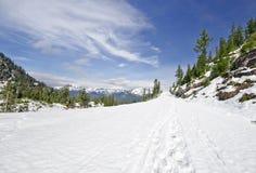 在Mt Shuksan coverd附近的美丽的景色与雪 免版税库存照片