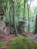 在Mullerthal足迹的巨大的岩石在Berdorf,卢森堡 库存照片