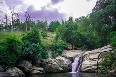 在munnar附近的瀑布 免版税图库摄影