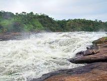 在Murchison附近在乌干达落 免版税库存照片