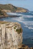 在Muriwai海滩上的垂直的峭壁 免版税库存照片