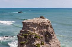 在Muriwai海滩的岩石 图库摄影