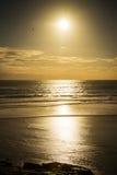 在Muriwai海滩的日落 库存照片