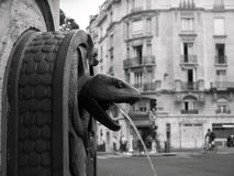 在musee d'histoire naturelle之外的蛇喷泉 免版税库存图片
