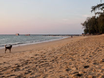 在Nai杨海滩,普吉岛,泰国的日落 库存照片