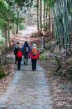 在Nakasendo途中的外国步行者在冬天 免版税库存照片