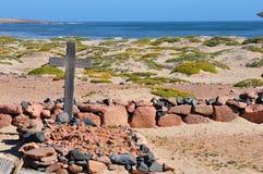 在Namib的坟墓 图库摄影