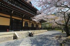 在Nanzen籍寺庙的春天在京都,日本 库存图片