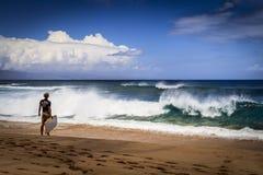 在Napili海湾,毛伊,夏威夷的海浪 免版税库存照片