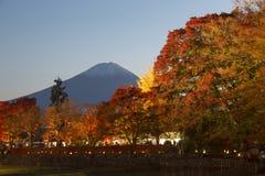 在Nashigawa河,日本的槭树走廊 库存图片