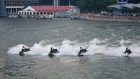 在NDP期间的海军显示2012年 库存照片