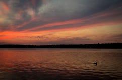 在Necko湖, Masuria,波兰的Colorfull日落 免版税库存照片