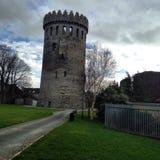 在nenagh Tipperary的城堡 免版税库存照片