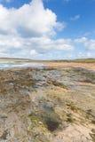 在Newquay和Padstow之间的康斯坦丁海湾康沃尔郡英国英国康沃尔北海岸 库存照片