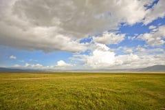 在ngorongoro里面的火山口 免版税库存图片