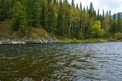 在Nichka河的秋天 图库摄影