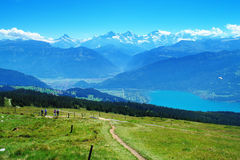 在Niederhorn山 库存图片