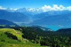 在Niederhorn山 免版税库存照片