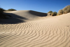 在Ningaloo附近的沙丘 库存照片