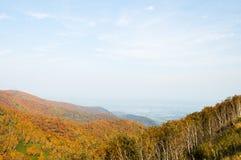 在Nissho通行证和Tokachi平原在秋天,北海道,日本的秋叶 免版税库存图片