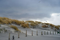 在Northsea沙丘上的风雨如磐的天空 库存图片