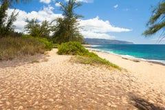 在northshore奥阿胡岛honululu夏威夷的海滩 免版税图库摄影