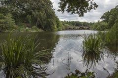 在Nostell小修道院的湖边 免版税库存图片
