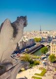 在Notre Dame大教堂的面貌古怪的人 库存图片