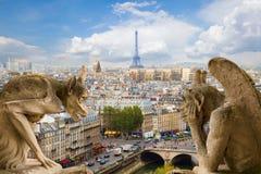 在Notre Dame大教堂,法国的面貌古怪的人 免版税库存图片