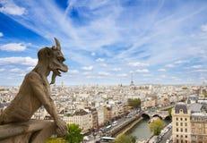 在Notre Dame大教堂,法国的面貌古怪的人 库存照片